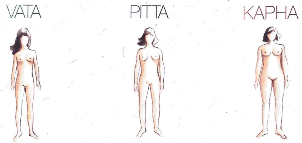 Ayurveda Skin Types Vata Pitta Kapha