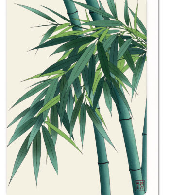 Ezen Greeting Card Bamboo 5060378041697 FLW_26
