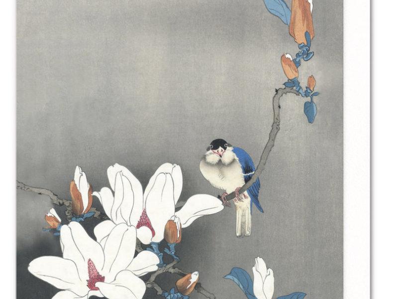 Blue bird on magnolia greeting card chi yu blue bird on magnolia ezen greeting card 5060378040133 anm14 m4hsunfo