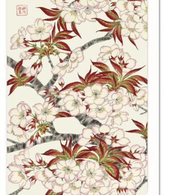 Cherry Blossoms 2 Ezen greeting card 5060378040232 FLW_2