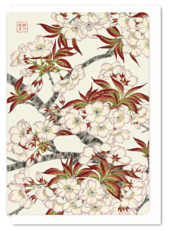 Cherry Blossoms 2 Ezen greeting card 5060378040232 FLW_2