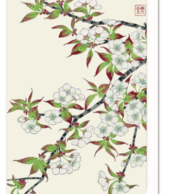 Cherry Blossoms 3 Ezen greeting card 5060378040331 FLW_12
