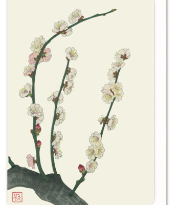 plum-blossom-ezen-greeting-card-5060378040225-flw_1