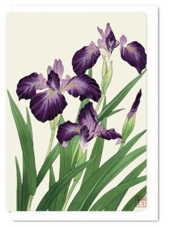purple-iris-ezen-greeting-card-5060378040362-flw_15