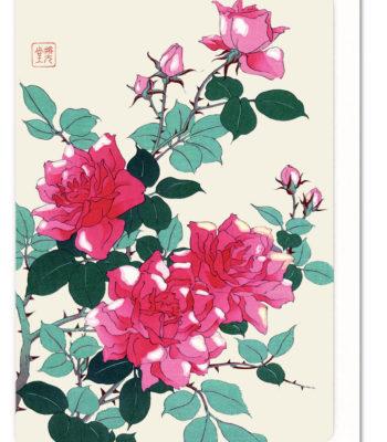 roses-5060378041703-flw_27